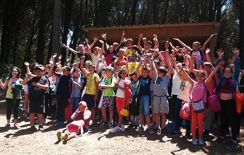 school-groups-kids-big
