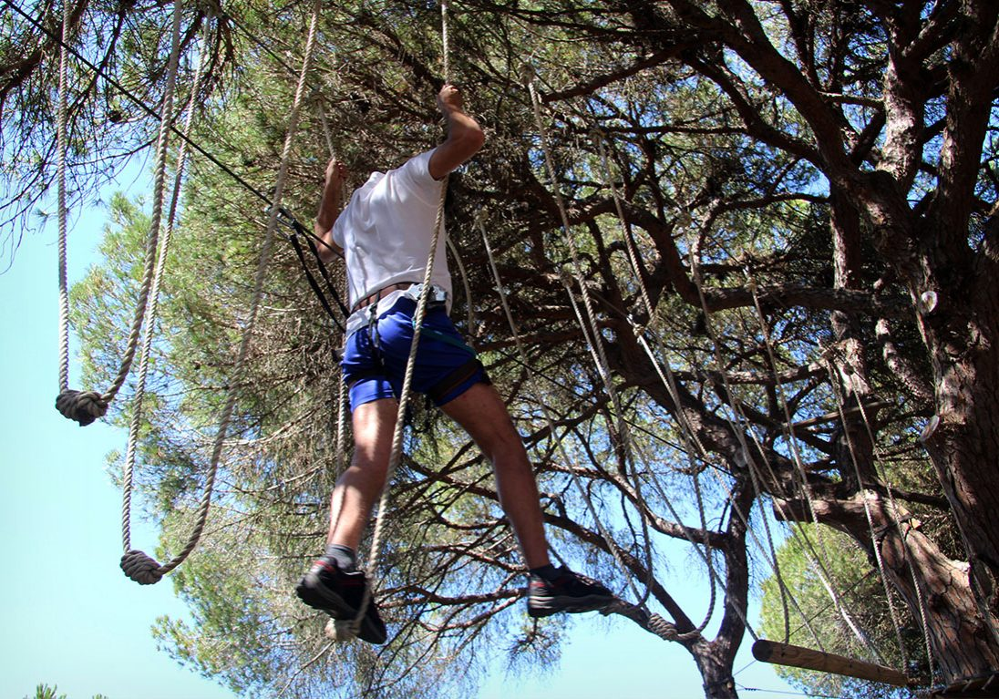 high-ropes-courses-tree